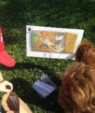neighbourhod_drop-in_-_story_walk_-_children_reading_story_board_in_park